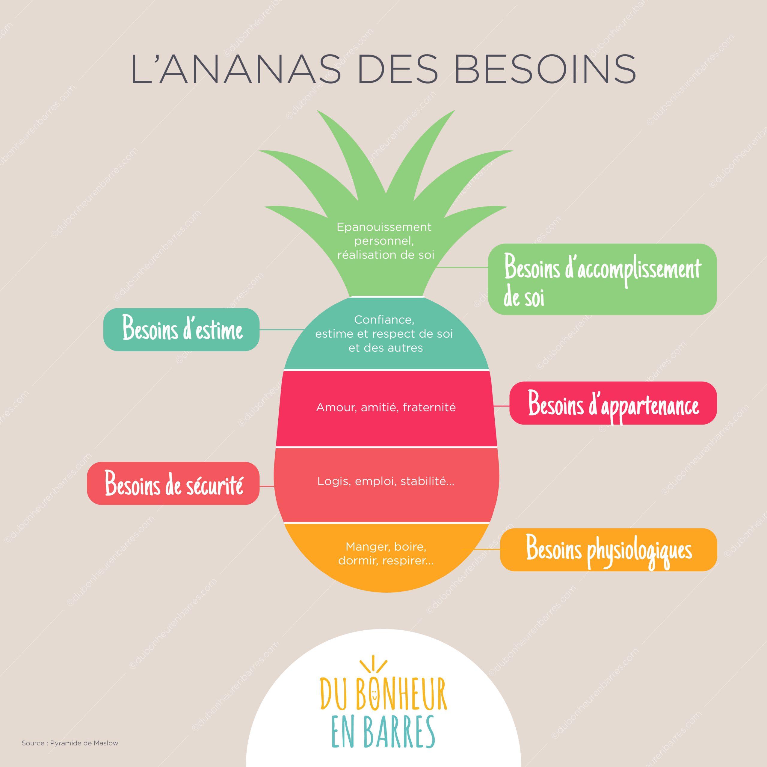 L'ananas des besoins