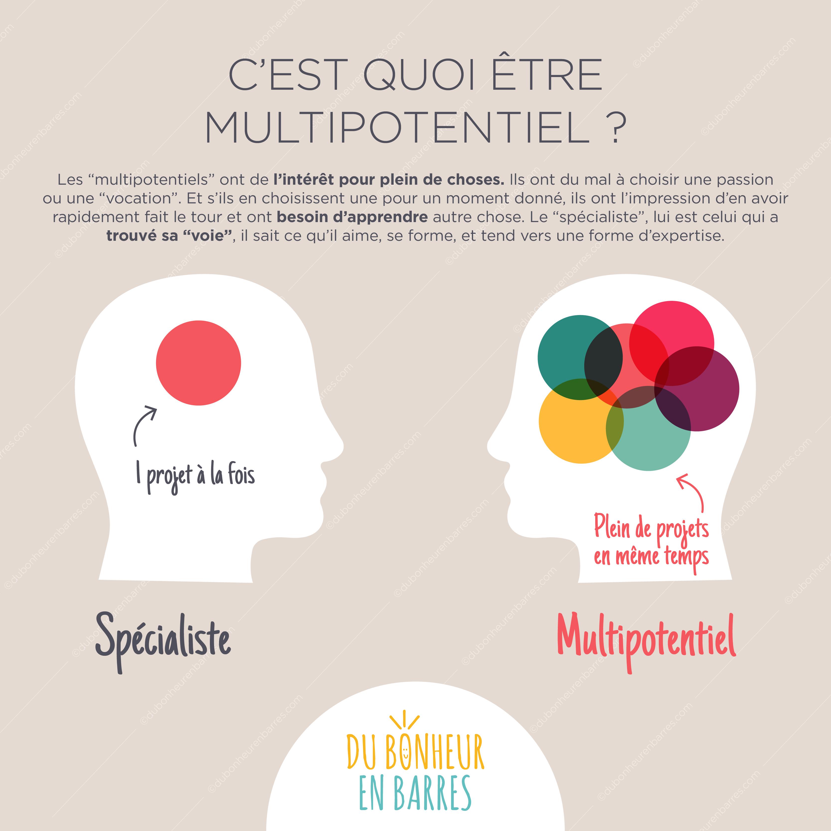 Le profil du multipotentiel